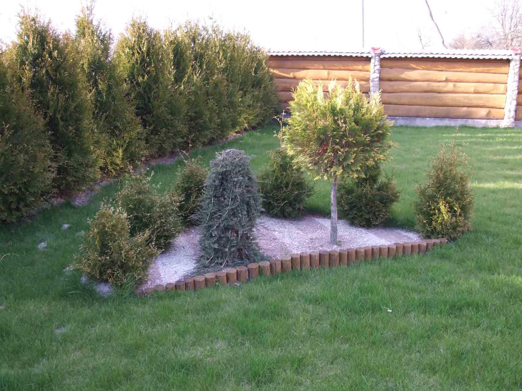 рокарій для прикраси саду