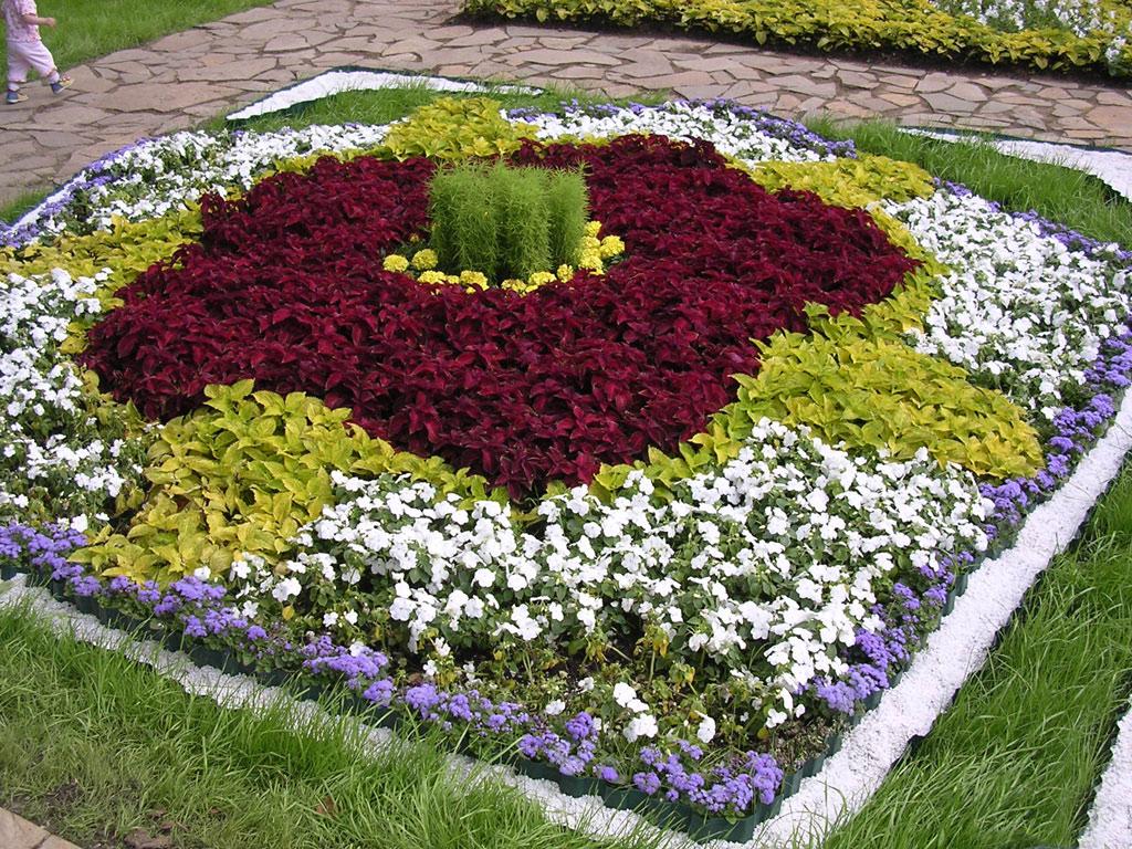 ландшафтний дизайн квітників